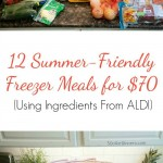 aldi-meal-plan-freezer-meals
