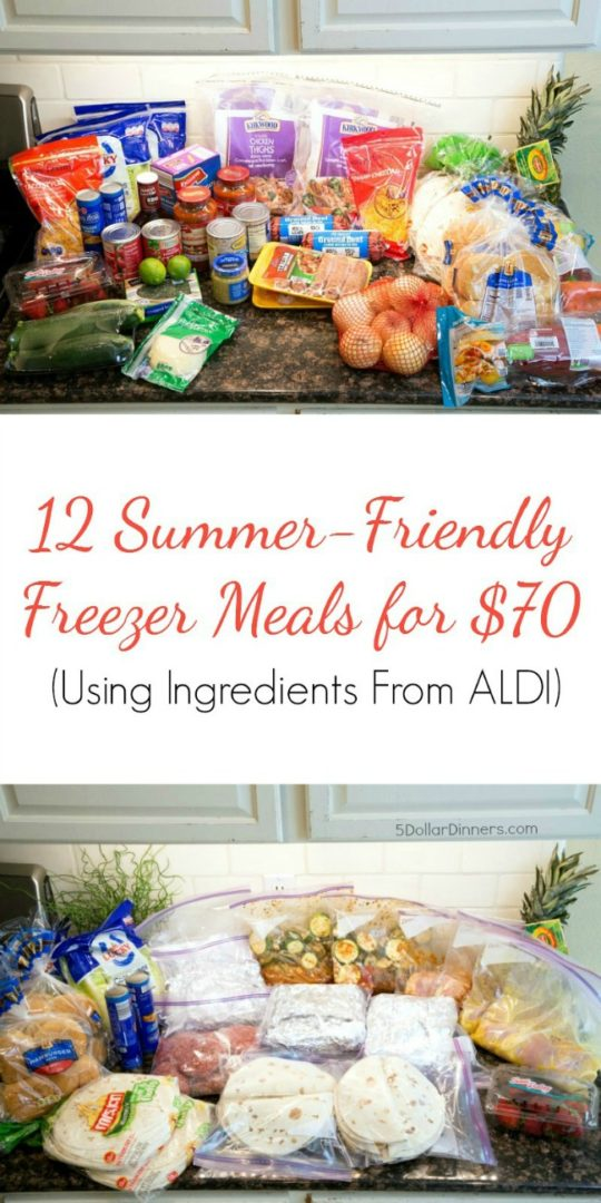 freezer-meal-plan-aldi-any-grocery-store