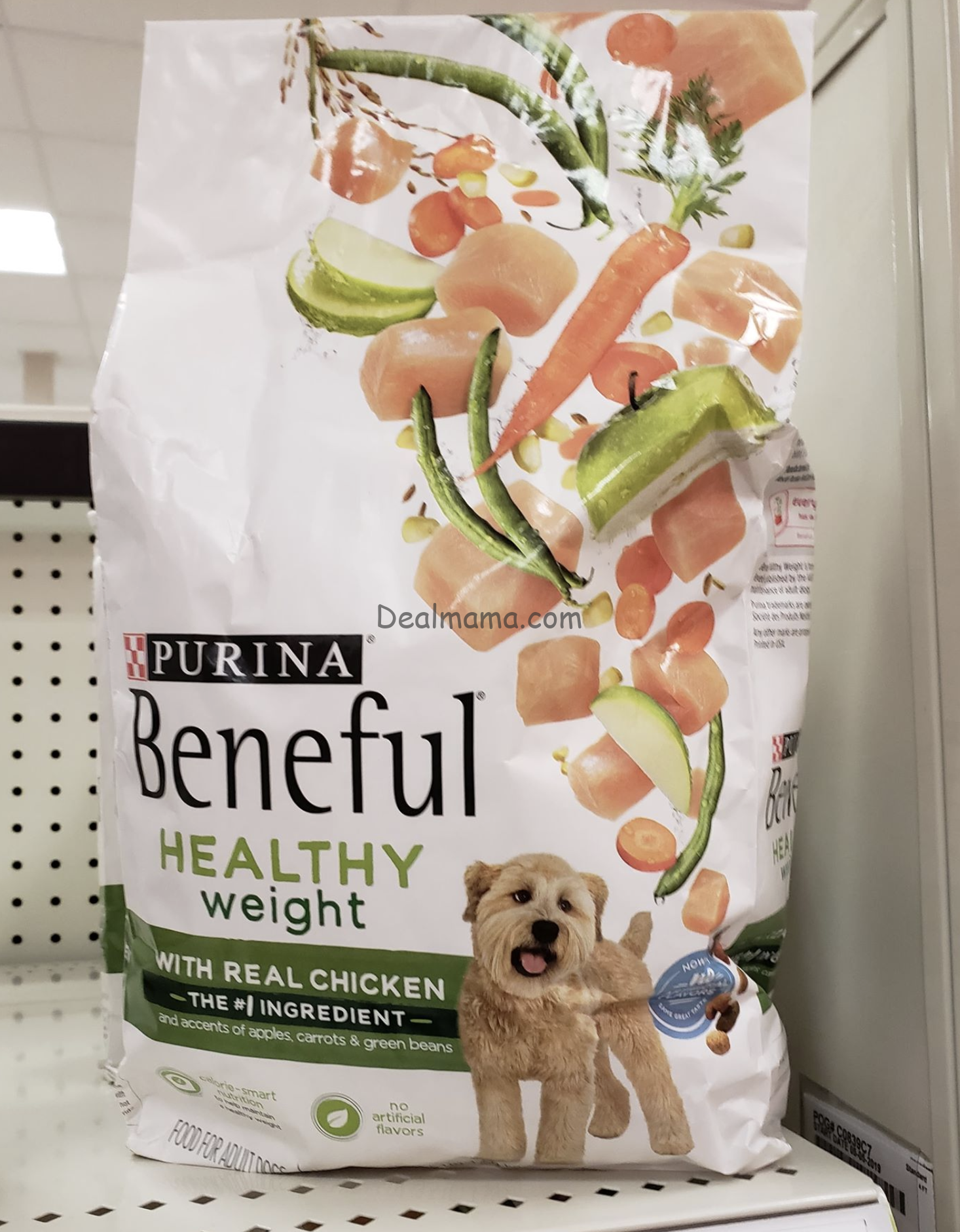 Purina Beneful Dry Dog Food only 2.20 each!